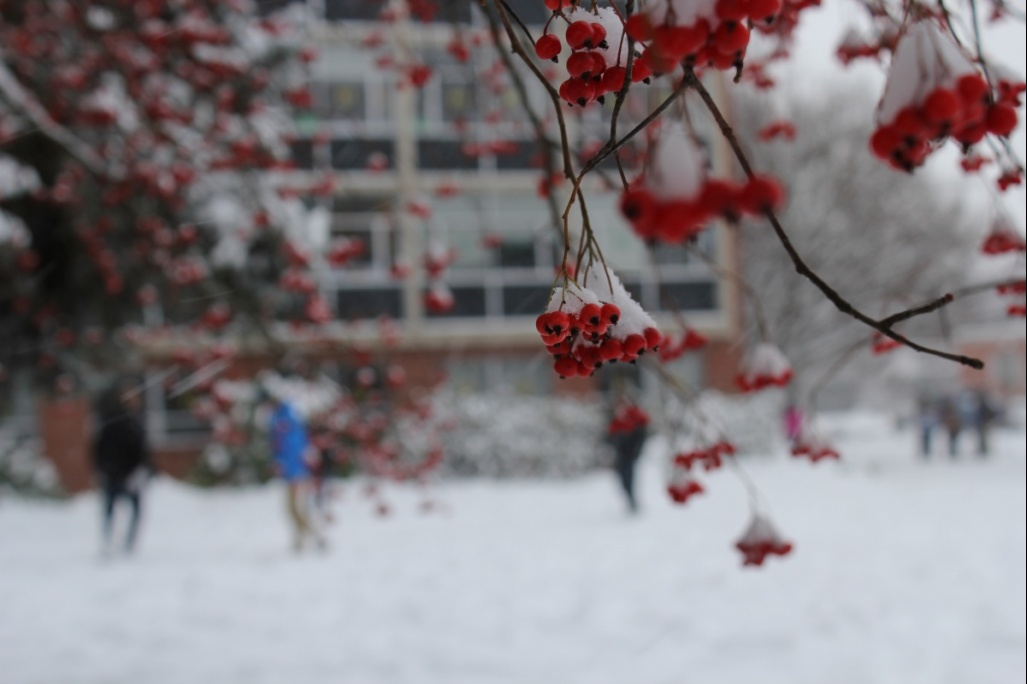 campus with snow